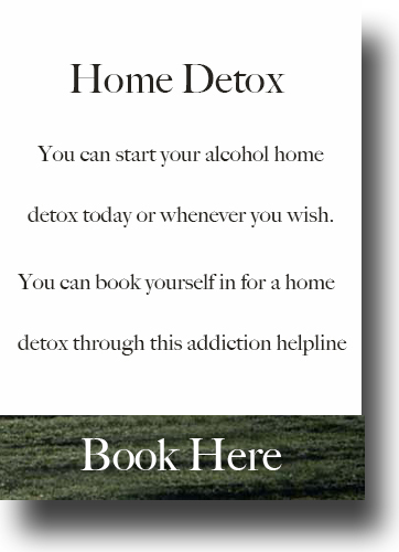 alcohol rehab home detox